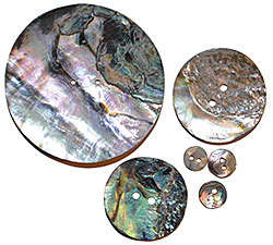 Conch Shell Disc - Abalone - 2 Hole