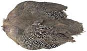 Guinea Fowl Skin