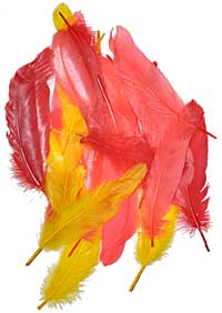Goose Feathers - Dyed - Reds / Yellows