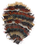 Feather Pad - Amber Amherst