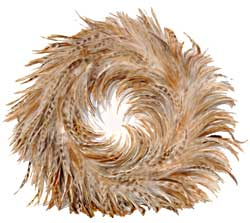 Feather Wreath - Red Chinchilla Hackle
