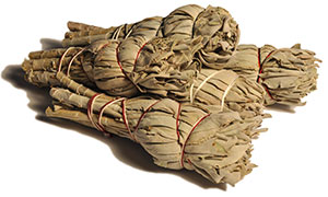 California White Sage Smudge Bundles - Minis