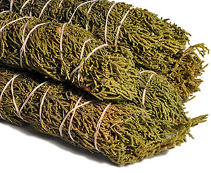 Juniper Bundles
